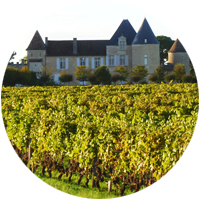 Graves and Sauternes